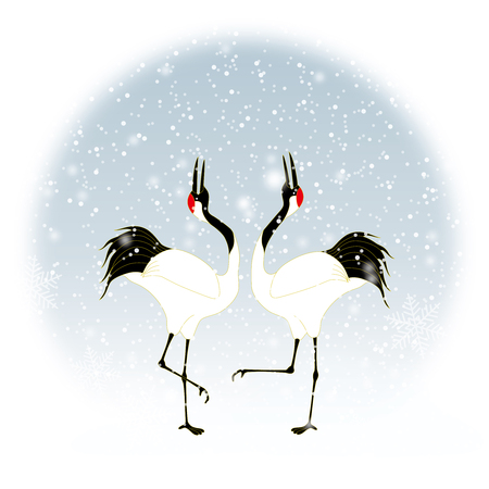 Courtship dancing brace of red-crested white cranes in snow.