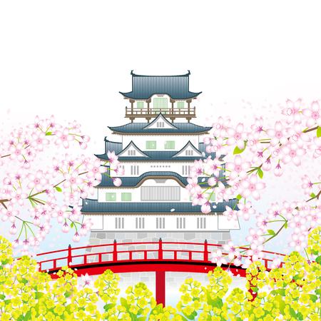 Japanese castle in the springtime Vektorové ilustrace