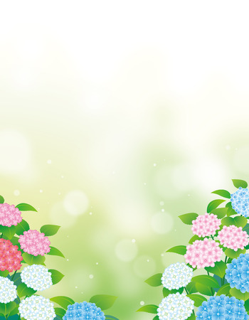 hydrangea flowers background Ilustracja