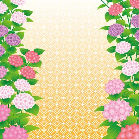 Hydrangea flowers. Illustration