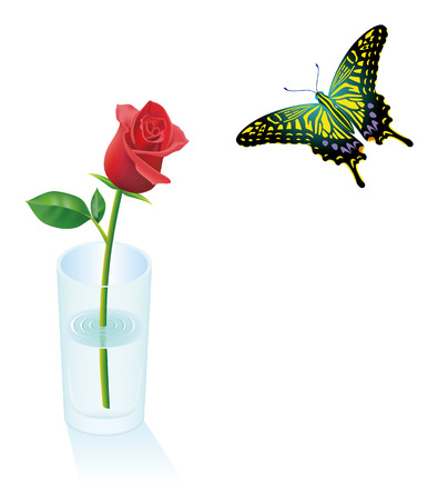 Red rose flower in a glass icon.