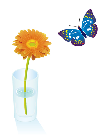 A orange Gerbera flower in a glass on a white background. Illustration