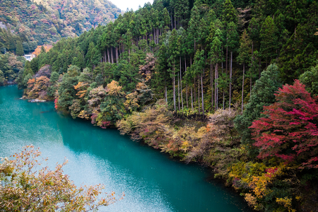 Japanese lake in autumn