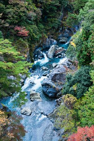 Japanese mountain stream in autumn