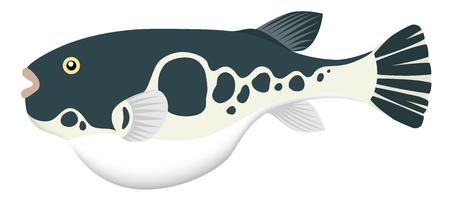 balloon fish, isolated on the white background. Ilustração