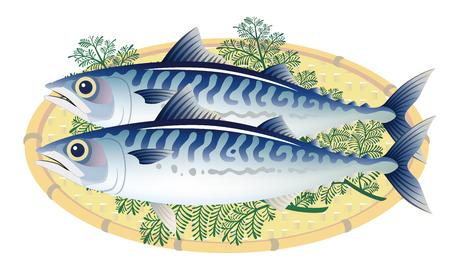 makrelen op een mandje van bamboe, geïsoleerd op de witte achtergrond. Stock Illustratie