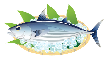 The bonito on a bamboo basket, isolated on the white background.  イラスト・ベクター素材