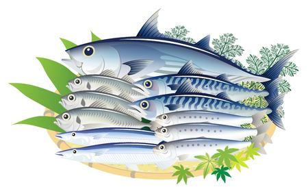 Pesce fresco delizioso isolato sui precedenti bianchi