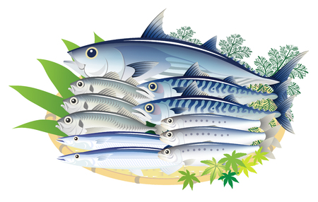 Delicious fresh fish isolated on the white background