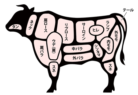 beef cuts diagram Çizim