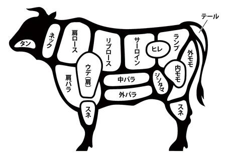 beef cuts diagram Stock Illustratie