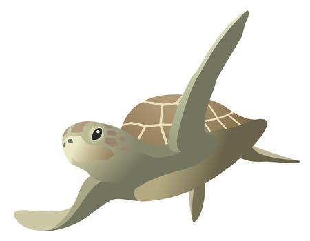 The sea turtle, isolated on white background Çizim