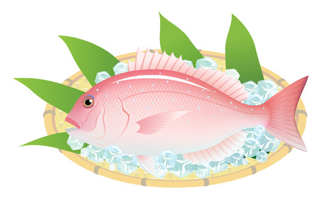 The red sea bream on a bamboo basket, isolated on the white background. Stok Fotoğraf - 106935304