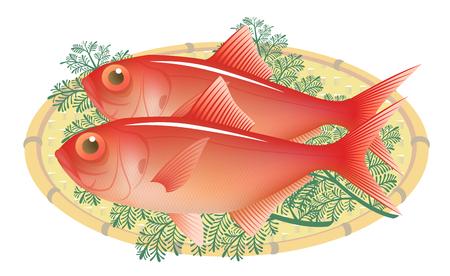 fresh alfonsin on a bamboo basket, isolated on the white background. Illustration