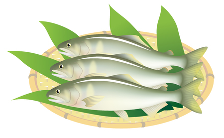 Japanese sweetfish on a bamboo basket, isolated on the white background.