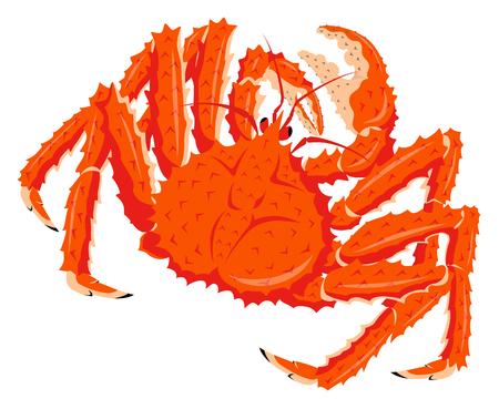 Cangrejo real rojo aislado en el fondo blanco