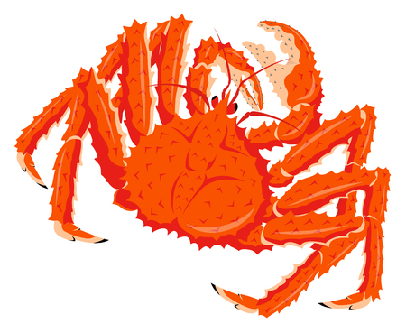 Red king crab isolated on the white background