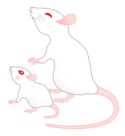 white mouse family, isolated on white background. Archivio Fotografico - 119585885