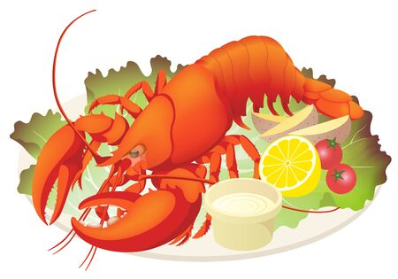 Red Boiled Lobster on Dish, Isolated on the White Background