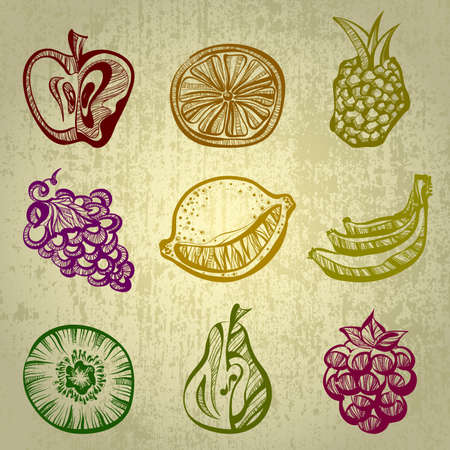 pears: set of fruits Illustration