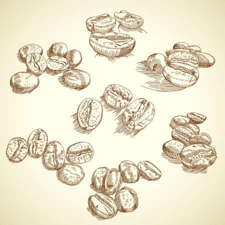 granos de cafe: café