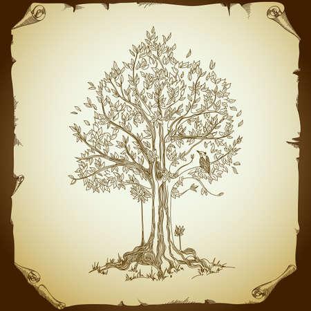 duif tekening: achtergrond met boom Stock Illustratie