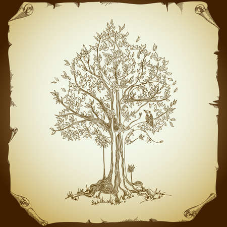 bird and tree: background with tree Illustration