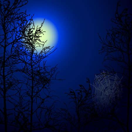 scary night: background Illustration