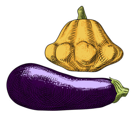 Yellow squash and eggplant on a white background.  Freehand drawing.