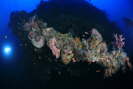 Liberty shipwreck in the waters of bali  photo