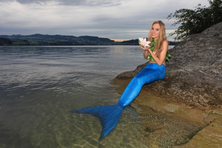Mermaid  Stock Photo - 14900514