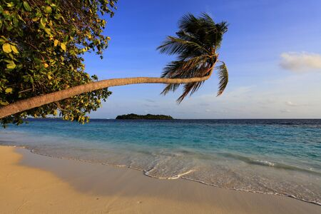Sandy beach on maldivian island Stock Photo - 17596077