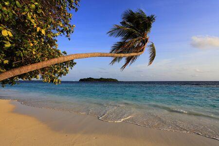Sandy beach on maldivian island Stock Photo - 17596077