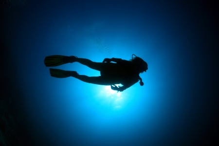Scuba diver in the blue water Stock Photo