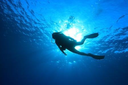 海でのスキューバ ダイビングのシルエット