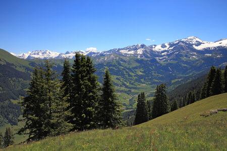 Valley of Lauenen with snowy swiss mountais photo
