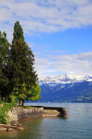 montañas nevadas: A orillas del lago de Thun y las montañas nevadas, Suiza
