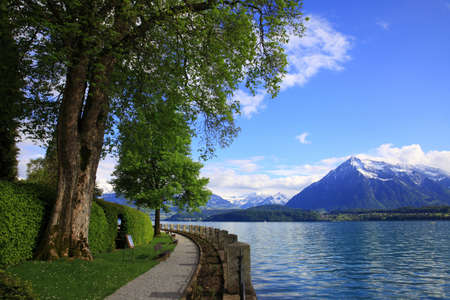 tourist feature: Lakefront of lake Thun and snowy mountains, Switzerland