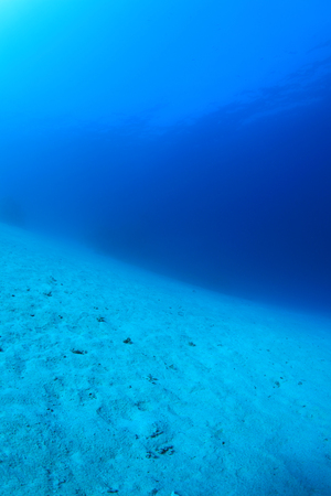 Sandy sea floor of the red sea Stock Photo
