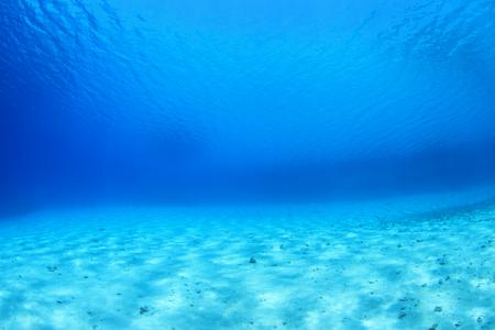 sharm el sheik: Sandy sea floor of the red sea