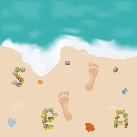 shore: Beautiful paintings of the sea and the shore footprints in the sand and inscription shells