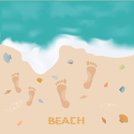 footprints in sand: Beautiful paintings of the sea and the shore footprints in the sand and inscription shells