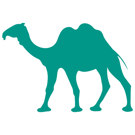 dromedary: Stylized icon of a colored camel on a white background Illustration