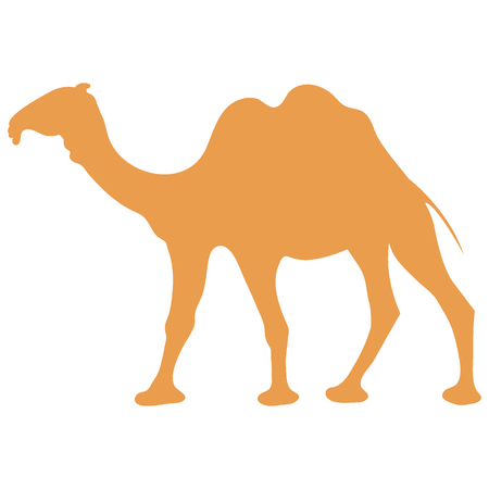 Stylized icon of a colored camel on a white background Illustration