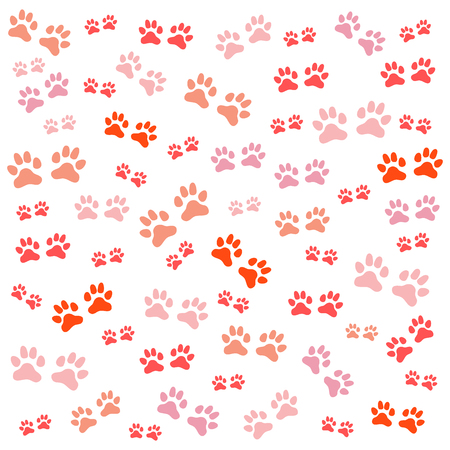 Nice picture of wild animal traces on a white background