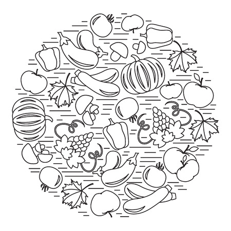 zucchini: Set of autumn seasonal fruits and vegetables in circle. Tomato, pepper, grapes, zucchini and other fall fruits and vegetables for announcement, advertisement, flyer or banner. Vector illustration.