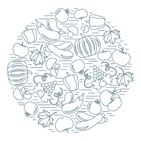 vivacity: Set of autumn seasonal fruits and vegetables in circle. Tomato, pepper, grapes, zucchini, eggplant and other fall fruits and vegetables for announcement, advertisement, flyer or banner. Vector illustration.