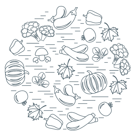 zucchini: Set of autumn seasonal vegetables in circle. Tomato, pepper, zucchini and other fall vegetables for announcement, advertisement, flyer or banner. Vector illustration.
