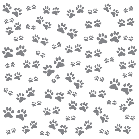 traces: Nice picture of wild animal traces on a white background