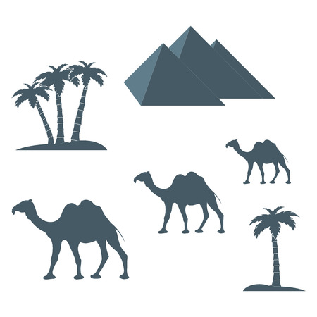 camels: Nice picture showing love to travel: pyramids, palm trees, camels on a white background